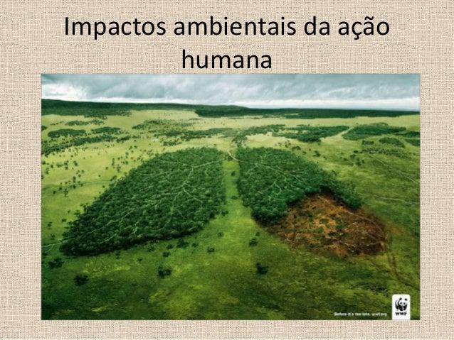 Impactos ambientais da ação humana