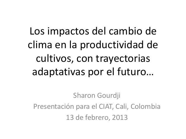 Los impactos del cambio declima en la productividad de  cultivos, con trayectorias adaptativas por el futuro…             ...