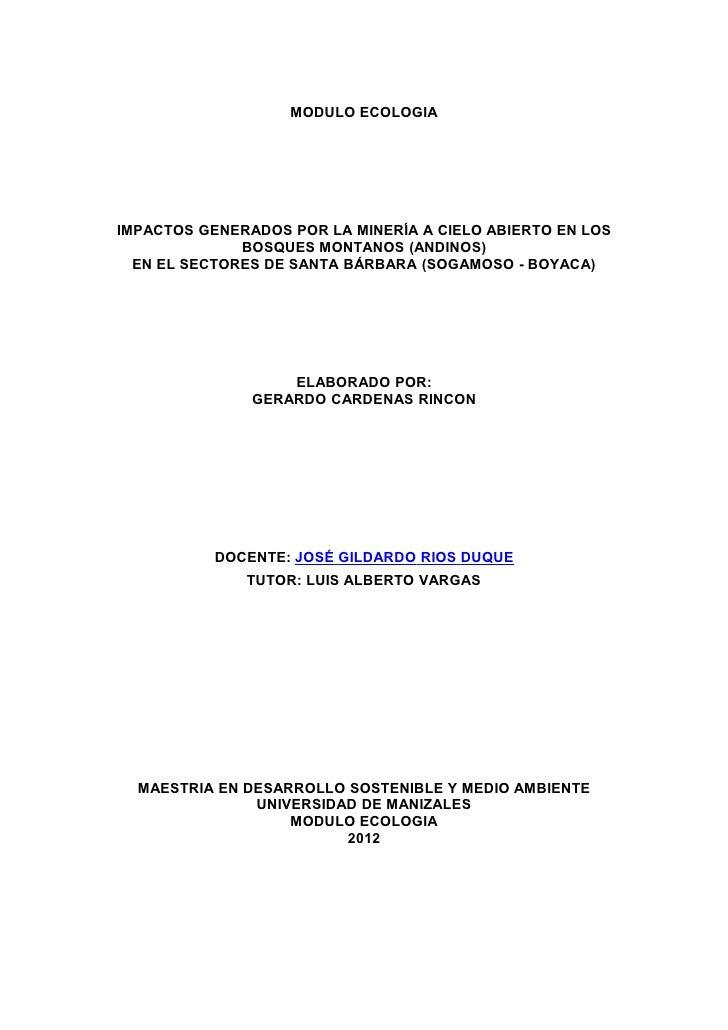 MODULO ECOLOGIAIMPACTOS GENERADOS POR LA MINERÍA A CIELO ABIERTO EN LOS              BOSQUES MONTANOS (ANDINOS)  EN EL SEC...