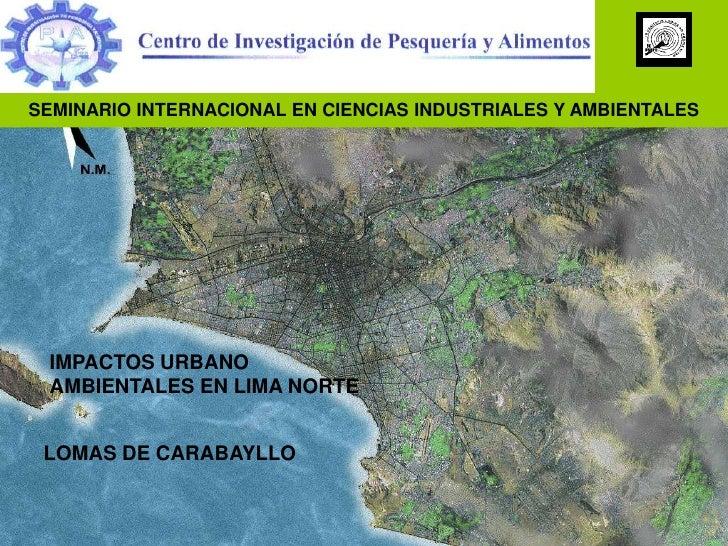 SEMINARIO INTERNACIONAL EN CIENCIAS INDUSTRIALES Y AMBIENTALES<br />IMPACTOS URBANO AMBIENTALES EN LIMA NORTE<br />LOMAS D...