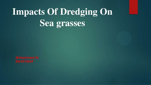 Impacts of dredging on Seagrass