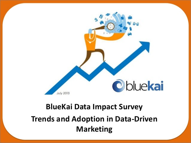 BlueKai's Semi-Annual Data Impact Survey