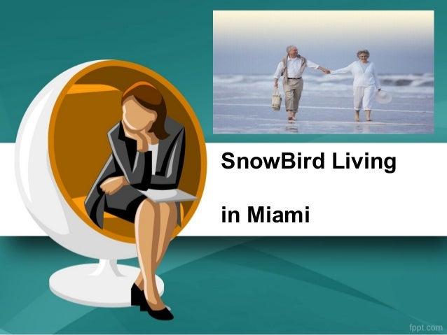 SnowBird Livingin Miami