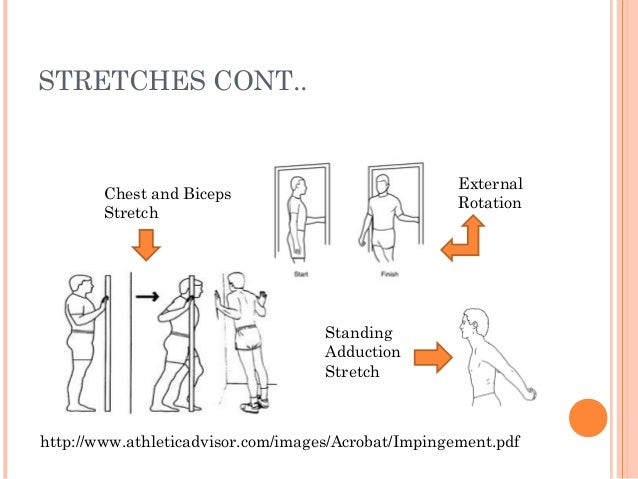 Shoulder Impingement Exercises   galleryhip.com - The ...