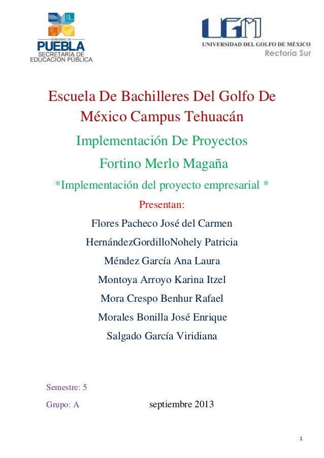 Escuela De Bachilleres Del Golfo De México Campus Tehuacán Implementación De Proyectos Fortino Merlo Magaña *Implementació...