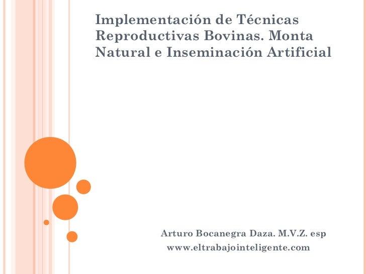Implementación de TécnicasReproductivas Bovinas. MontaNatural e Inseminación Artificial         Arturo Bocanegra Daza. M.V...