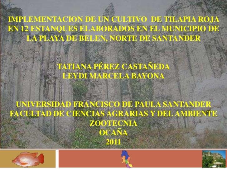 IMPLEMENTACION DE UN CULTIVO DE TILAPIA ROJAEN 12 ESTANQUES ELABORADOS EN EL MUNICIPIO DE    LA PLAYA DE BELEN, NORTE DE S...