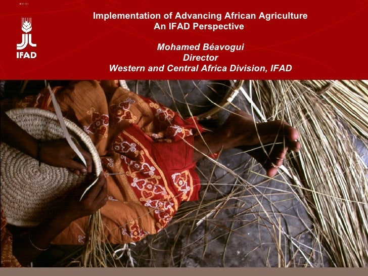 Implementation of Advancing African Agriculture An IFAD Perspective  Mohamed Béavogui Director Western and Central Africa ...