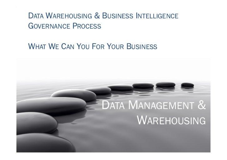 Implementing BI & DW Governance