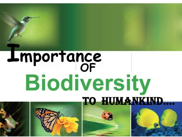 Important strategy for the conservation of biodiversity in india