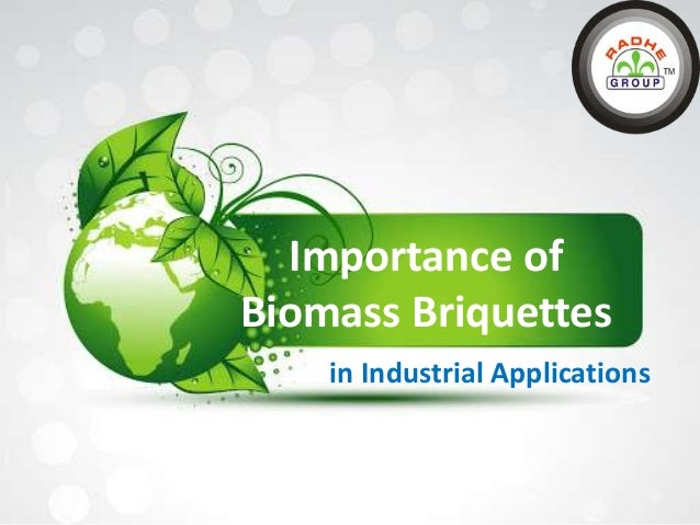 Importance of Biomass Briquettes in Industrial Applications