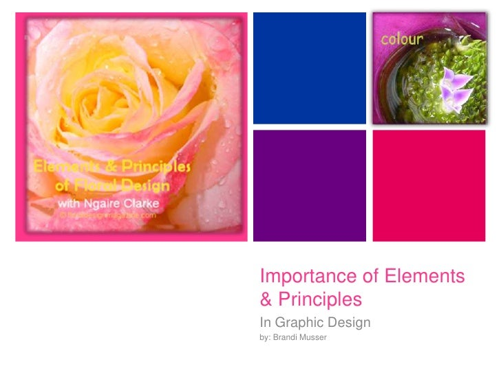 +         Importance of Elements     & Principles     In Graphic Design     by: Brandi Musser