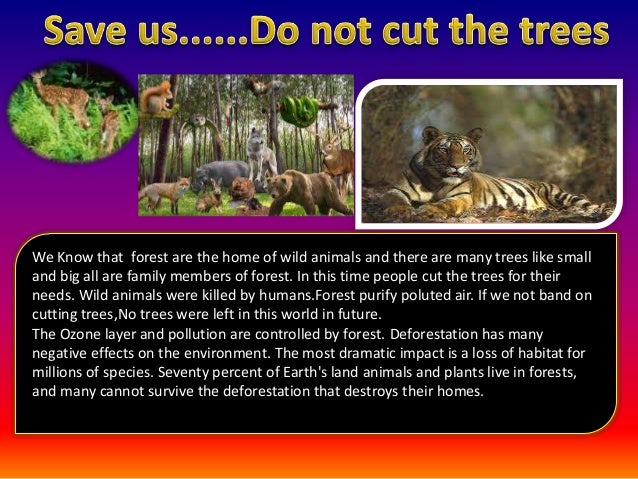 the dependency of humans on worlds forest and the need to protect them Why do we need trees such as people, get hold of that energy and to protect animals we need to protect the places where they live and the other species in.