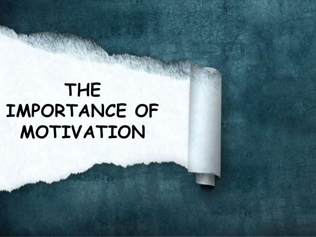 importance of motivation The best employee motivation efforts will focus on what the employees deem to be important it may be that employees within the same department of the same organization will have different motivators.