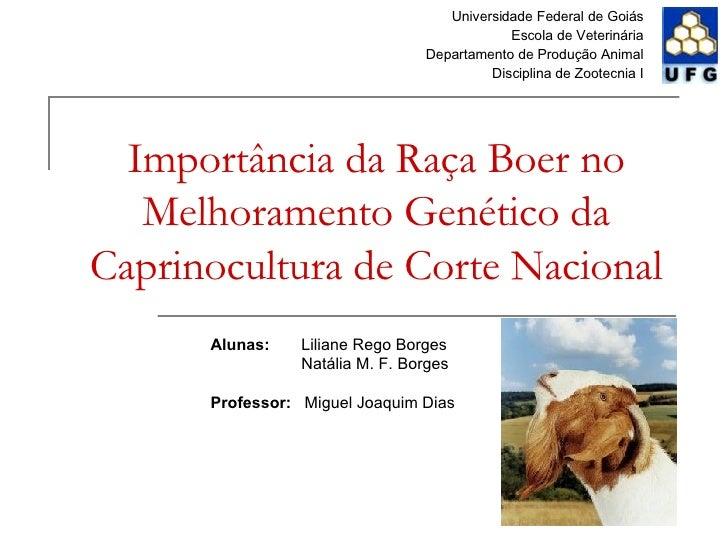 Importância da Raça Boer no Melhoramento Genético da Caprinocultura de Corte Nacional Universidade Federal de Goiás Escola...