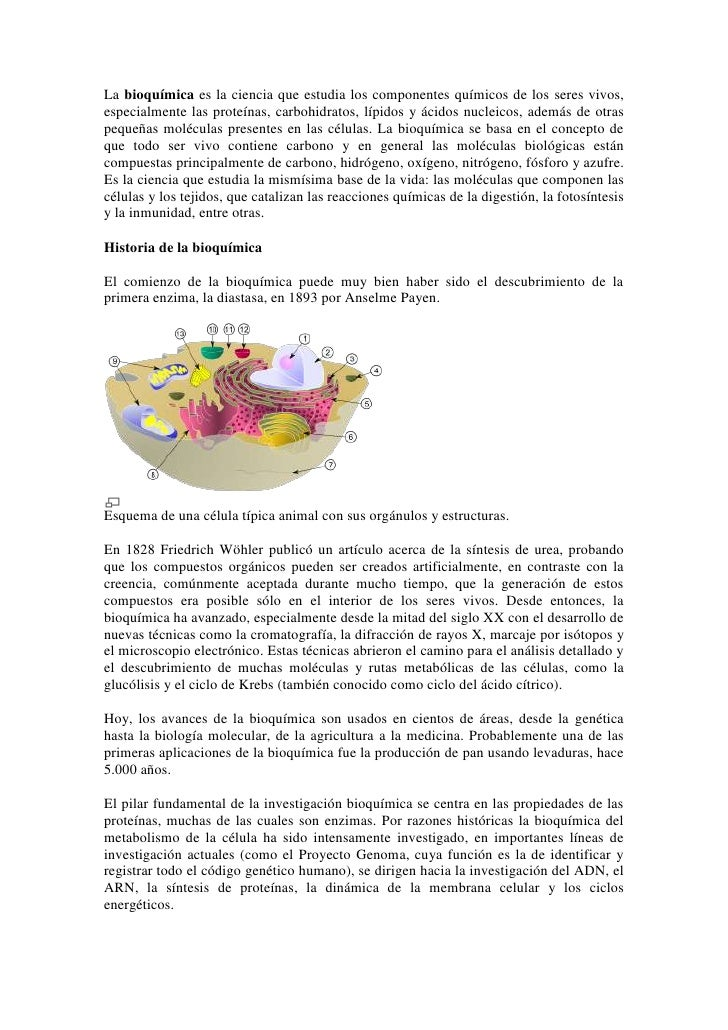 Importancia Bioquimica