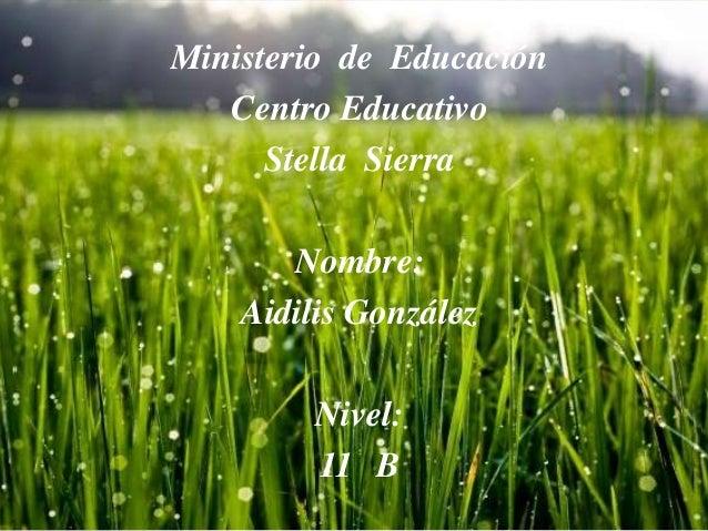Ministerio de Educación Centro Educativo Stella Sierra Nombre: Aidilis González Nivel: 11 B