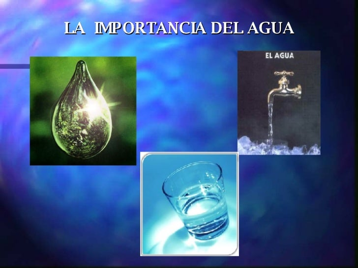 Importanciadel Agua