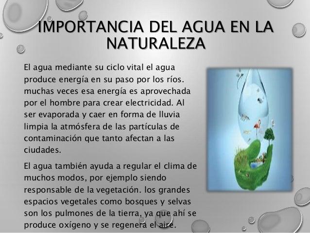 Importancia Del Agua en la Naturaleza Importancia Del Agua en la