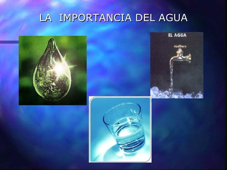 Importancia del agua para el cerebro