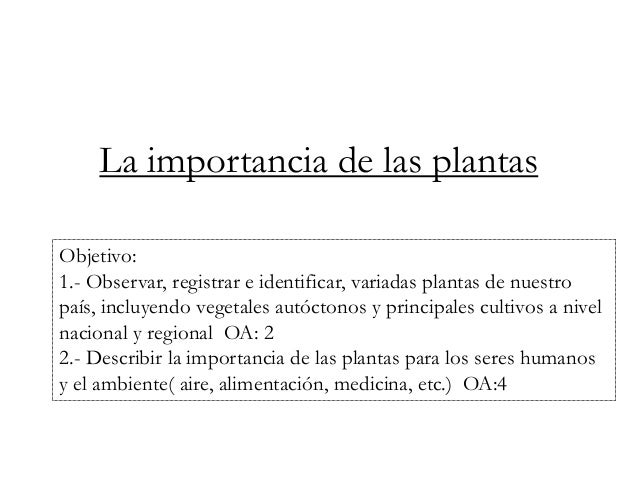 La importancia de las plantas  Objetivo:  1.- Observar, registrar e identificar, variadas plantas de nuestro  país, incluy...
