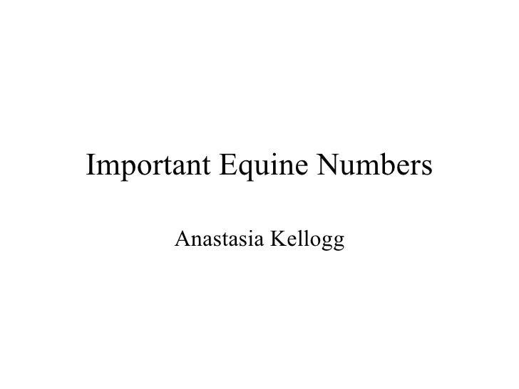 Important Equine Numbers Anastasia Kellogg