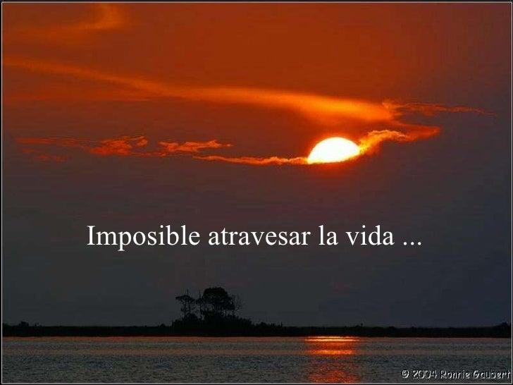 Imposible dejar de creer