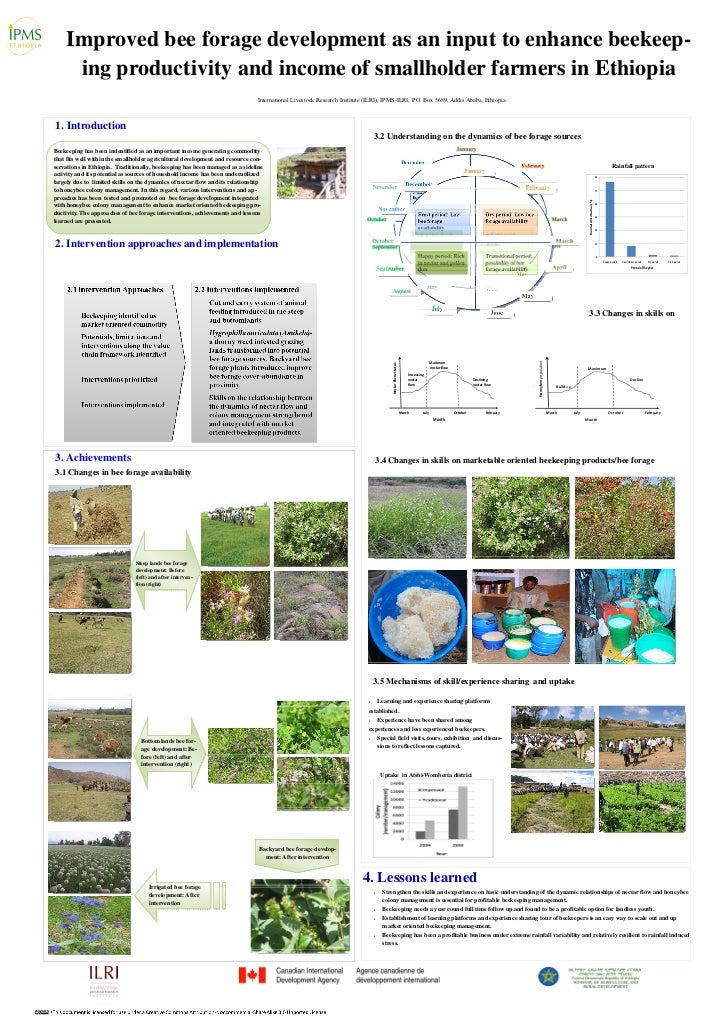 Improved bee forage development as an input to enhance beekeep-     ing productivity and income of smallholder farmers in ...