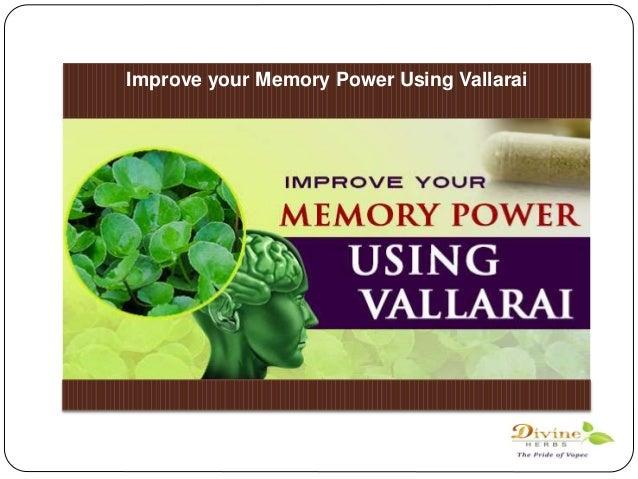Best energy supplement powder