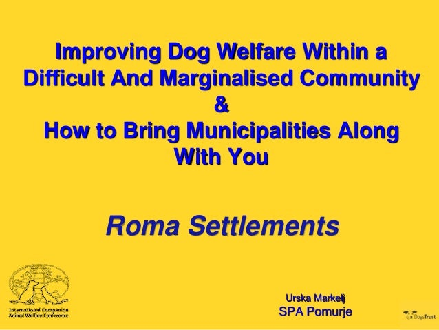 ICAWC 2013 - Improving Dog Welfare Within a Difficult Community & How to Bring Municiplities Along With You - Urska Markelj