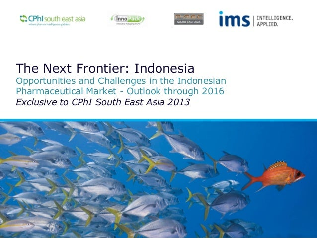 The Next Frontier: Indonesia  Opportunities and Challenges in the Indonesian Pharmaceutical Market - Outlook through 2016 ...
