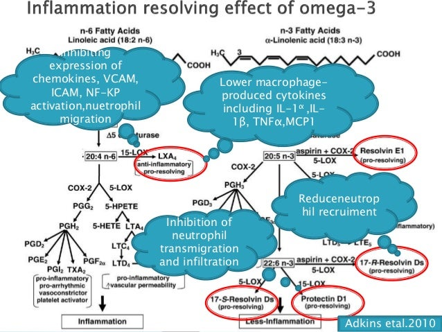 Mechanism underlying the cardioprotective effects of omega-3 poly uns…
