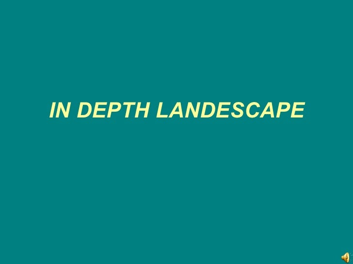 IN DEPTH LANDESCAPE