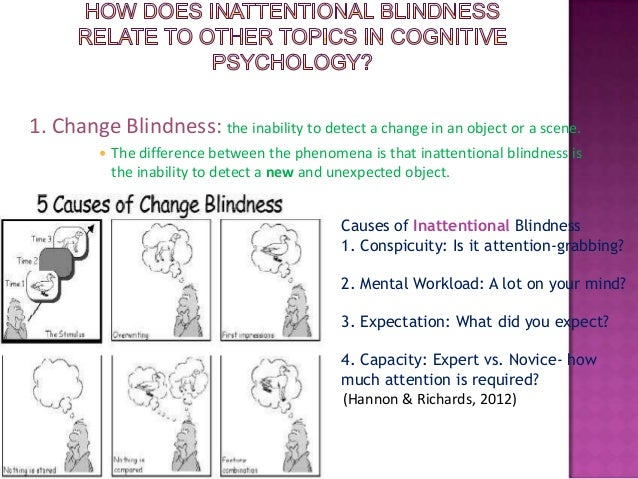 inattentional blindness Learn about divided attention, selective attention, inattentional blindness, & change blindness by carole yue.