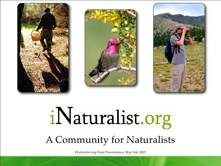 iNaturalist: i213 Final Presentation