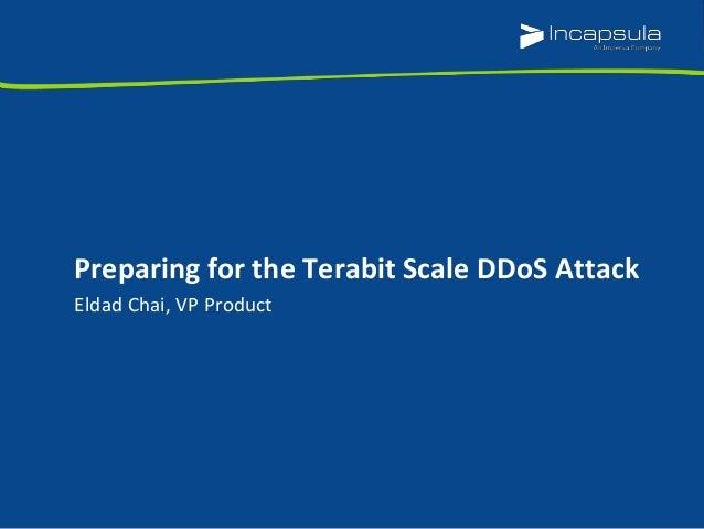 Eldad Chai, VP Product Preparing for the Terabit Scale DDoS Attack