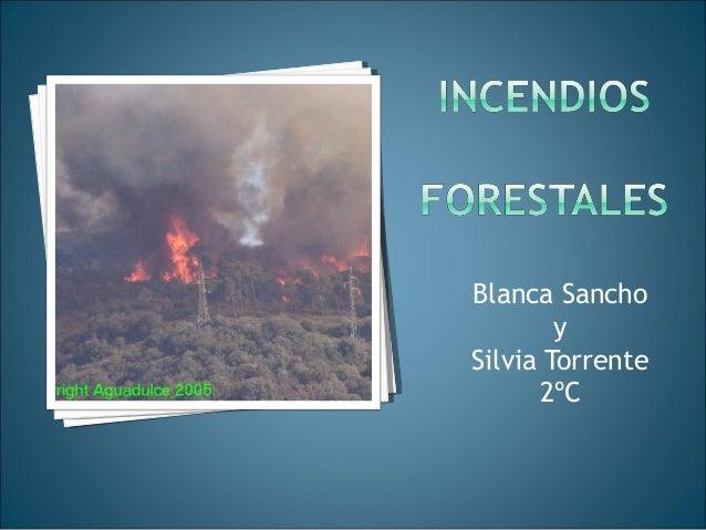 Blanca Sancho y Silvia Torrente 2ºC