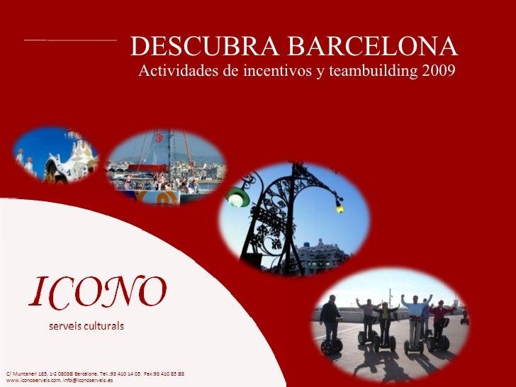 Incentivos Icono 2009