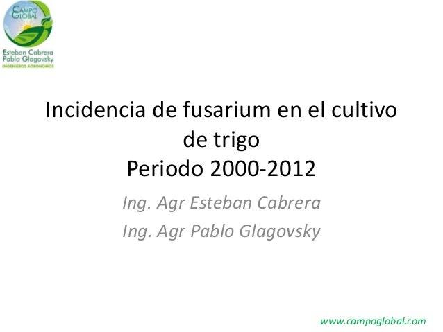 Incidencia de fusarium en el cultivo de trigo Periodo 2000-2012 Ing. Agr Esteban Cabrera Ing. Agr Pablo Glagovsky  www.cam...