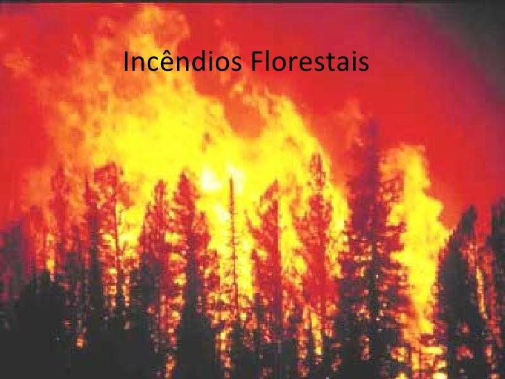 Incêndios Florestais