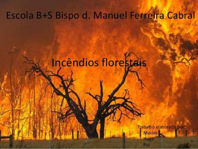 Escola B+S Bispo d. Manuel Ferreira Cabral  Incêndios florestais  Trabalho elaborado por:  - Moisés  - Hugo  - Rui