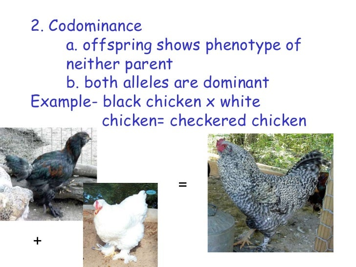 Incomplete, codominance, multiple alleles
