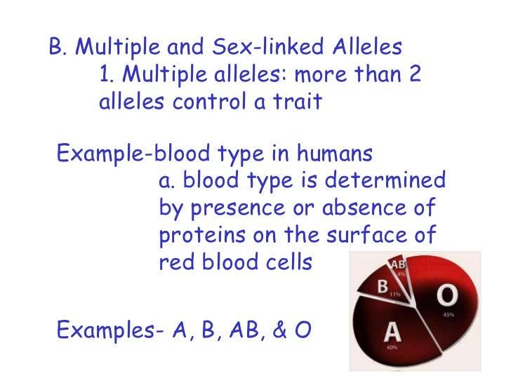 Codominance And Multiple Alleles Worksheet Blood Types Proga Info