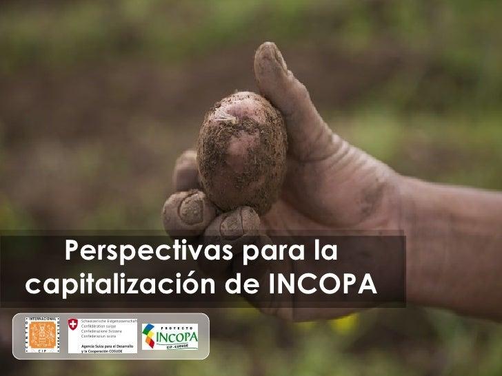 Perspectivas para la capitalización de INCOPA