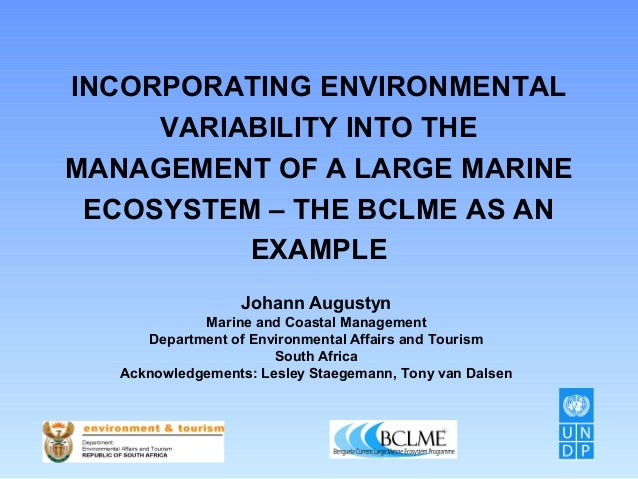 INCORPORATING ENVIRONMENTAL VARIABILITY INTO THE MANAGEMENT OF A LARGE MARINE ECOSYSTEM – THE BCLME AS AN EXAMPLE Johann A...