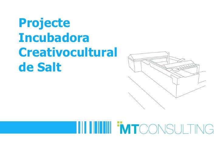 ProjecteIncubadoraCreativoculturalde Salt