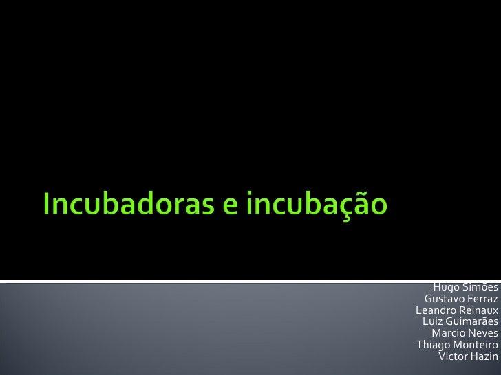 Hugo Simões Gustavo Ferraz Leandro Reinaux Luiz Guimarães Marcio Neves Thiago Monteiro Victor Hazin
