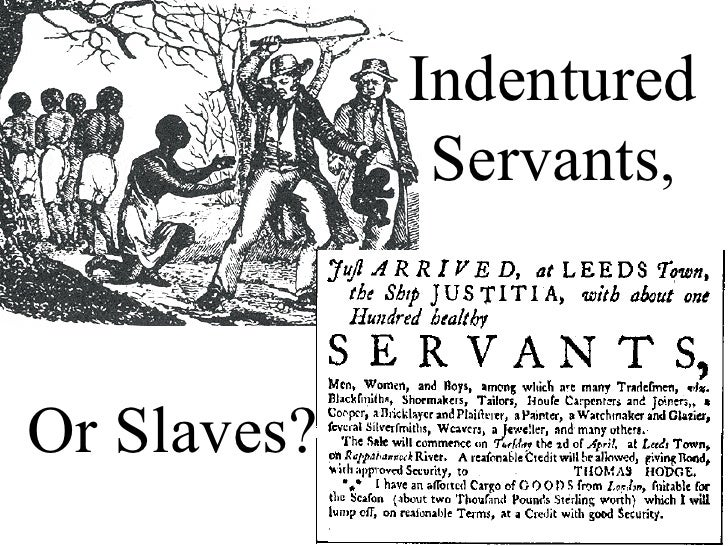 white servitude and the growth of The birth of slavery  indentured servitude was the dominant means of securing cheap labor  white servants were allowed to police slaves through slave patrols.