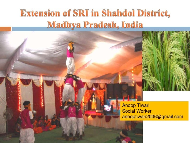 Extension of SRI in Shahdol District,  Madhya Pradesh, India