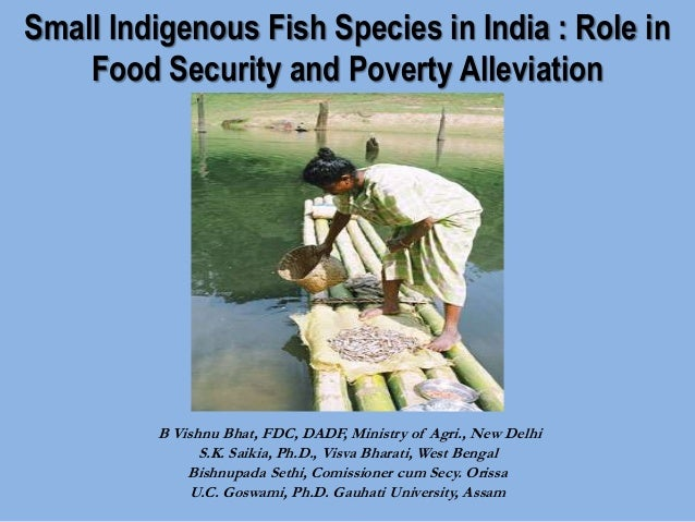 Small Indigenous Fish Species in India: Role in Food Security and Poverty Alleviation. By B. Vishnu Bhat, S..K.Saikia, Bishnupada Sethi and U.C. Goswami.